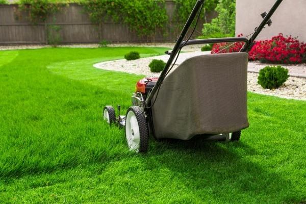 jak vybrat sekacku na travu