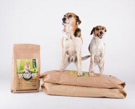 Jak vybrat nejzdravější krmivo pro psa