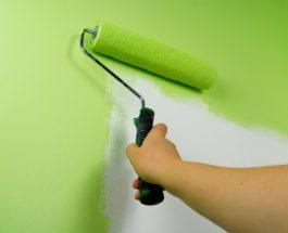 Jak vymalovat zeď – návod