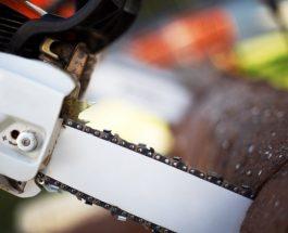 Jak na údržbu motorové pily?