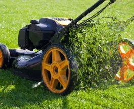 Jak zvolit správný typ sekačky na vaši zahradu
