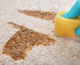 Jak vyčistit koberec levně, jednoduše a bez zbytečných chemikálií
