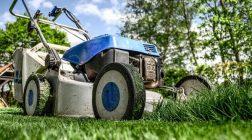 U sousedů mají trávu zelenější? Vyvarujte se častým chybám při péči o trávník!