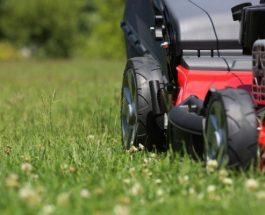 Jak na údržbu zahrady na jaře a v létě